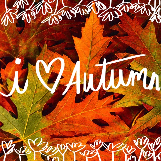 Prepare your home for fall 2015 for Fall home preparation